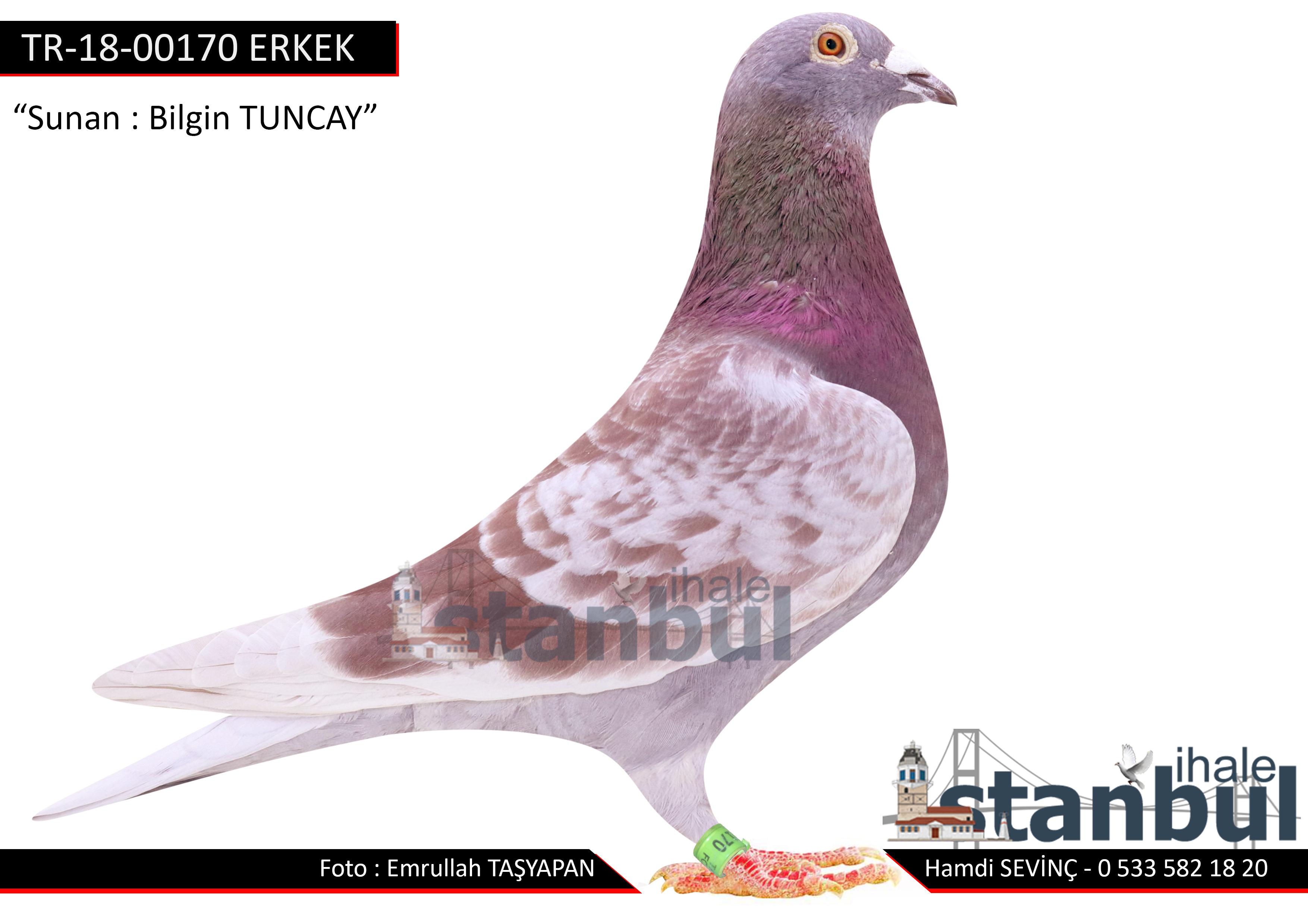 TR-18-000170 ERKEK