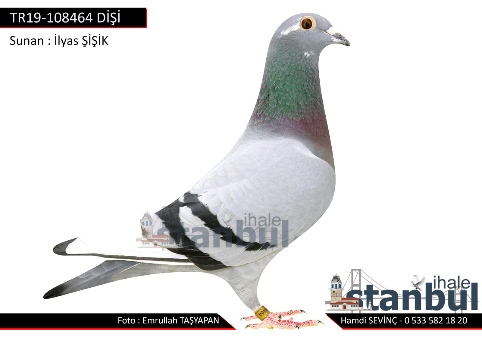 TR19-108464